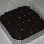 Семена перцев в плошке