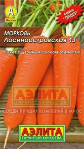 morkov-2